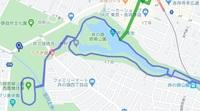 井の頭公園 コース.jpg
